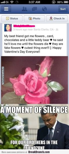 - Friendzone Funny - Friendzone Funny meme - - A moment of silence for our brothers in the friendzone The post Another one goes down. appeared first on Gag Dad. Funny Cute, The Funny, Brunch, Moment Of Silence, Lol, Cutest Thing Ever, Fake Flowers, Laughing So Hard, Just For Laughs