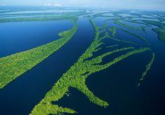 Arquipélago de Anavilhanas - Brasil