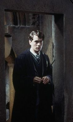 Tom Riddle (Voldemort) - Christian Coulson