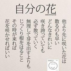 自分の花を咲かせればいい . . . #自分の花#大器晩成#恋愛 #遅咲き#仕事#夢#希望#言葉 #そのままでいい#花#日本語
