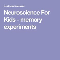 neuroscience for kids experiments games worksheets etc