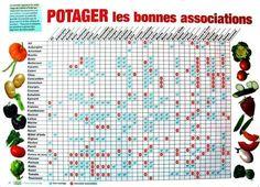 associations légumes 2016 03 aide mémoires plantations