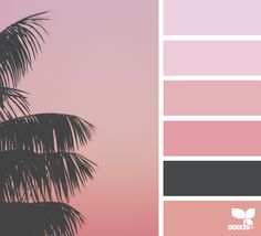 Tropical Spectrum via @designseeds