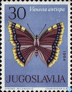 1964 Yugoslavia - Butterflies, Insects