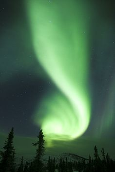 Night Show, Alaska - Aurora Borealis in the month of March viewed late at night in Alaska