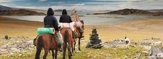MONGOLIE : La Mongolie, un pays que nous connaissons bien. Le galop des chevaux, les yourtes, la steppe, le grand désert de Gobi sont notre univers et nous sommes heureux de vous le faire découvrir dans ces pages... Ouvrez et respirez la liberté et la steppe. Choisir la Mongolie comme destination de voyage, c'est opter pour ces grands espaces où la steppe borde les horizons, où les cavaliers mongols galopent avec le vent.
