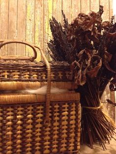 Dry and old Summer Photos, Wicker Baskets, My Photos, Picnic, Outdoor, Home Decor, Outdoors, Summer Pictures, Picnics