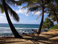 Insert hammock here. Outdoor Furniture, Outdoor Decor, Hammock, Duke, Beach, Lazy, Water, Outdoors, Gripe Water