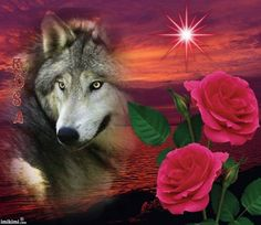el perro y las flores