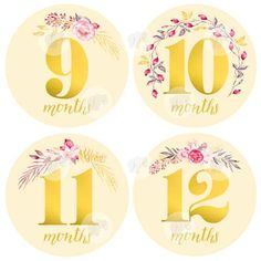 Baby Girl Monthly Milestone Stickers - Girl Month Stickers - Floral Gold Watercolor Bouquet- 1 to 12 Months - Milestone - Flowers Baby Monthly Milestones, Monthly Baby, Baby Month Stickers, Gold Watercolor, Dad Birthday, Birthday Ideas, Parent Gifts, Baby Month By Month, Sticker Paper