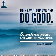 Turn away from evil and do good. Search for peace, and work to maintain it. Psalms 34:14 NLT Best Bible Verses, Spiritual Needs, Psalms, Spirituality, Peace, Spiritual, Sobriety, World