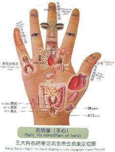 Alternative Health, Alternative Medicine, Hand Reflexology, Health Heal, Traditional Chinese Medicine, Holistic Nutrition, Self Healing, Natural Medicine, Health And Wellbeing
