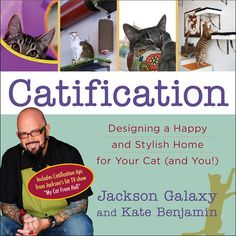 "How do you create a stylish home that's built around your cat's needs? I interview Kate Benjamin, who wrote ""Catification"" with Jackson Galaxy; we're giving away two copies."