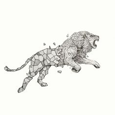 Lion by Kerby Rosanes