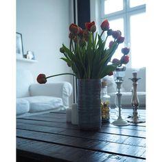 New Day - New Start  und wenn alle Stricke reißen,reite ich heute einfach mit meinem Einhorn davon  #blooms #decor #details #flowers #flowerstagram #germaninteriorblogger #goodmorning #Hamburg #hh #home #homedecor #homeinterior #humpday #interieur #interior #interiordesign #interiors #living #livingroom #myhome #newstart #tulips #tulpen