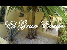 El Gran Escape - Isla Mujeres Mexico