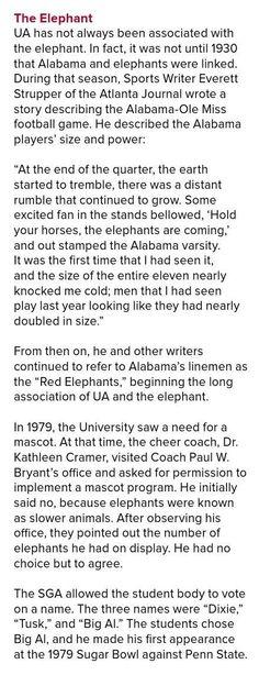 The Elephant Story - University of Alabama 2015 Family Weekend Guide Alabama College Football, Ole Miss Football, Crimson Tide Football, University Of Alabama, Alabama Crimson Tide, American Football, Football Team, Alabama Athletics, Bama Fever