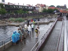 Hel fokarium2 - Hel (miasto) – Wikipedia, wolna encyklopedia