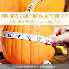 Investigate measurement (height, circumference, weight) using pumpkins in this fun fall-themed pumpkin measurement activity for preschool and pre-k. Preschool Science, Kids Learning Activities, Preschool Lessons, Group Activities, Preschool Ideas, Toddler Activities, School Science Projects, Measurement Activities, Homeschool