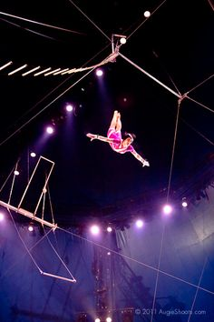 Circus Trapeze | Big Apple Circus: Trapeze 1