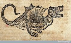 V0023075 A winged dragon; illustration of a parable. Woodcut. by wellcome images, via Flickr