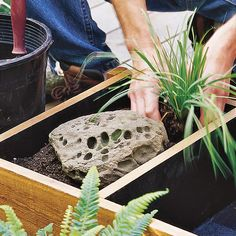 Build a Deck-Top Pond. ~ Don't have room for a water garden? Try this beautiful pond-in-a-box alternative. To make one yourself, just follow these easy instructions.