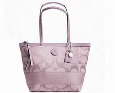 Coach Signature Stripe Tote Handbag « Holiday Adds