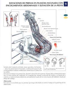 Ejercicios para abdominales - Taringa!