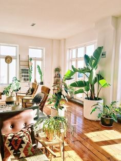 This New Zealand Home in a Converted Factory Is a Plant Lover's Dream - . - This New Zealand Home in a Converted Factory Is a Plant Lover's Dream – - New Zealand Houses, Boho Home, Plant Decor, Interior Design Living Room, Room Interior, Room Inspiration, Garden Inspiration, Living Spaces, Living Room With Plants