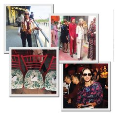 Gucci (Foto: Arquivo pessoal)