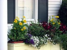 pretty flowerbox