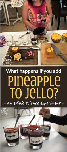 What happens if you add fresh pineapple to jelly (or Jell-O)? Fun edible science experiment from Go Science Kids.  #ediblescience #jelloexperiment #learnathome #scienceathome #homeschool Science Activities For Kids, Cool Science Experiments, Preschool Science, Kitchen Science, Sticky Labels, What Happens If You, Force And Motion, Stem For Kids