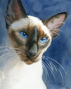 Siamese cat art PRINT Giclée Watercolor Painting on Blue Mehr
