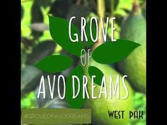Welcome to the Grove of Avocado Dreams: All-New WestPakAvocado.com