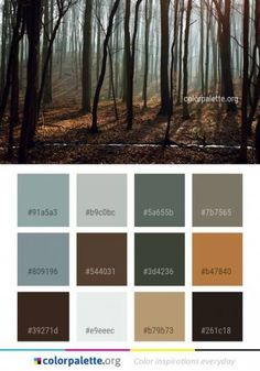64 ideas paint pallets for home color schemes warm Warm Color Schemes, Nature Color Palette, House Color Schemes, Colour Pallette, Bedroom Color Schemes, House Colors, Boy Room Color Scheme, Trendy Baby, Baby Boy Background
