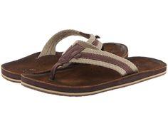 e634c307bef0 Ocean minded scorpion luxe brown. ScorpionOn ShoesFlip FlopsSandalSlide ...