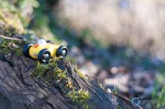 The car in the woods | Arteide