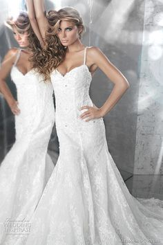 Italian Lace Wedding Gowns   Alessandro Couture Wedding Dresses 2011   Wedding Inspirasi