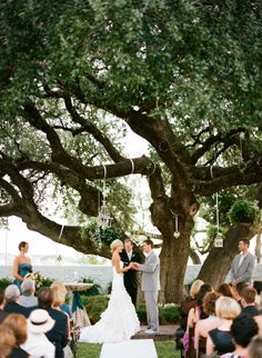 Stuff in the Tree - I would love to be married under a beautiful tree like this.