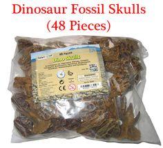 A pack of dinosaur skull models (48 models).