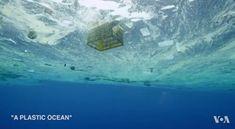 """สารคดี """"มหาสมุทรแห่งพลาสติก"""" นำเสนอปัญหาขยะพลาสติกในมหาสมุทรทั่วโลก"""