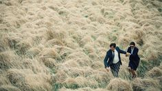 The Lobster Cannes Film Festival