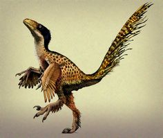 utahraptor dancing by paul heaston, via Flickr