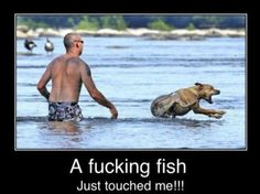 I know the language is a little bad but this is seriously me out in the ocean!! I hate when something touches my feet or leg and when I can see the fish around me!