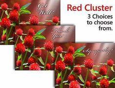RED CLUSTER2