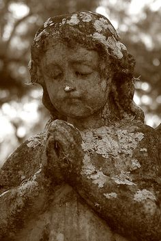 Devout little angel at Evergreen Cemetery, Jacksonville, FL by Carol Bailey White on Flickr.
