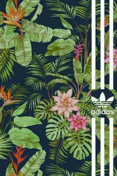 Adidas wallpaper tropical flowers