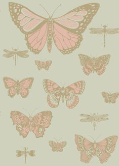 Cole & Son Butterflies and Dragonflies Pink and Olive Wallpaper main image