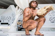 paläon - Forschungs und Erlebniszentrum Schöninger Speere - Ausstellung 29€