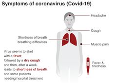 Coronavirus: Italy to close schools and colleges over outbreak - BBC News Italian News, Vietnam Airlines, Dry Cough, Health Ministry, Shortness Of Breath, Image Caption, Education And Training, Muscle Pain, Bbc News
